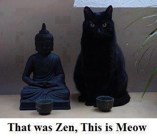 That was Zen. This is Meow